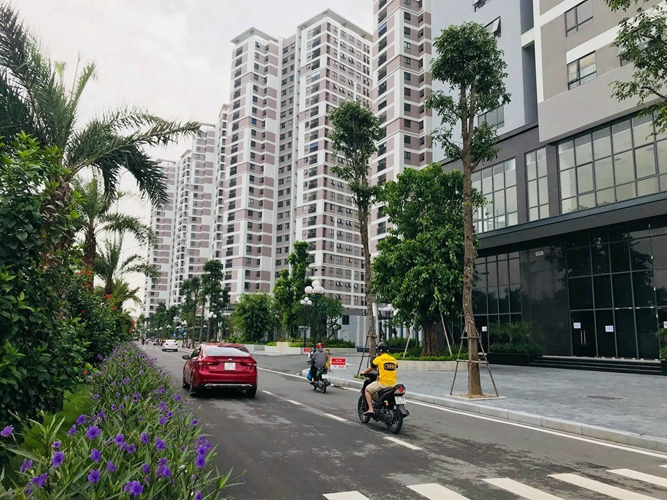Nhà ở xã hội chung cư Rice City Tố Hữu